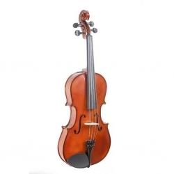 16'' Gül Ağacı Viola