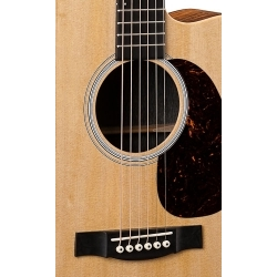 DCPA5K - Performing Artist - Elektro Akustik Gitar