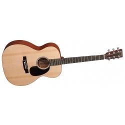 RSGT - Elektro Akustik Gitar