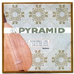 004/PBT - Pyramid Saz Teli 0.18